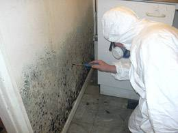 mould-damage